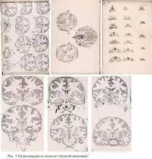 Вклад Н И Пирогова в развитие анатомии и мировой хирургии Н И  d olya реферат пирогов 5 png