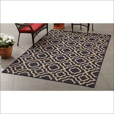 excellent tj ma home goods rugs happy marshalls area shocking