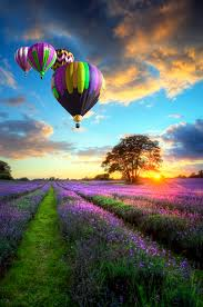 cool colorful nature photography. Wonderful Nature Throughout Cool Colorful Nature Photography