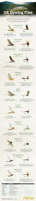 Fly Fishing Fly Identification Chart Fly Fishing Infographic Upwing Flies Uk Pesca Pinterest
