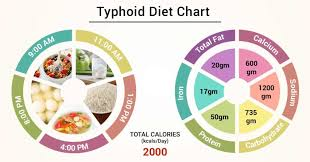 Diet Chart For Typhoid Patient Typhoid Diet Chart Lybrate
