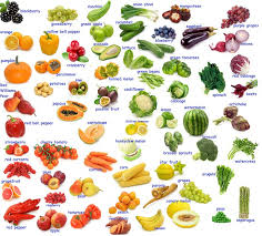 indian vegetables names in english with pictures. Wonderful Indian Best 25 Fruits And Vegetables Names Ideas On Pinterest  Severe  In Indian Vegetables Names English With Pictures G