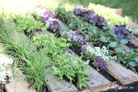 Herb Garden Wooden Pallet Herb Garden Repeat Crafter Me