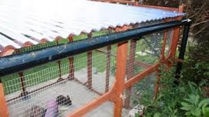 covering a rabbit run helps keep it dry