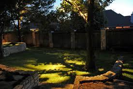 Moonlight Tree Lighting Moonlight Effect Tree Lighting Patio Lighting Landscape