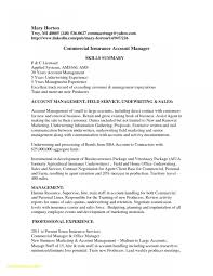 28 Account Manager Resume Sample Free Sample Resume