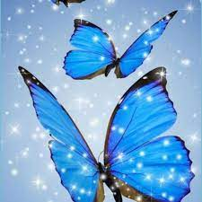 Blue Butterfly Wallpaper For Phone 12 ...