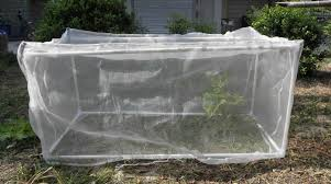 garden insect netting ideas