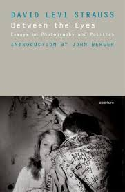 between the eyes essays on photography and politics by david levi 381122