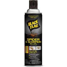 black flag aerosol spider and scorpion spray