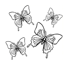 Small Picture FREE Butterfly Coloring Pages 4 Butterflies Flight