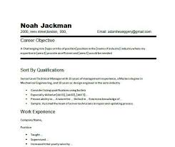 Career Overview Resume Examples - Examples of Resumes