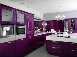 purple kitchen cabinets stock kitchen cabinets 24 purple kitchen countertops home decor ideas picture