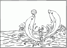 Small Picture Free Printable Pictures Of Dolphins Kids Coloring