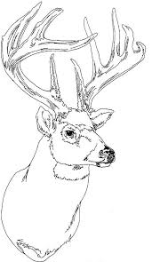 Small Picture adult coloring pages deers Google Search Pattern Yule