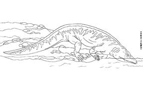 Animali Del Carbonifero Da Colorare