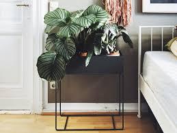 home trend furniture. Mit Der Plant Box Von Ferm Living In Dunkelgrau, Fällt Es Leicht Indoor-Pflanzen. Pinterest Home Trend Furniture