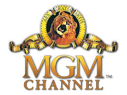 File:Mgm channel nl.png - Wikipedia