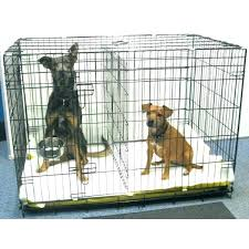 dog cage with divider dog kennel with divider large dog crate divider decor budget dog cage