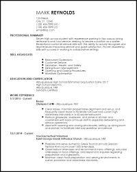 Entry Level Resume Template Microsoft Word Professional Resume Template Restaurant Resume 10 Free Word Pdf