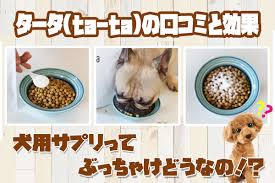 タータ(ta-ta)の口コミ体験談|犬用コラーゲンの効果とは?口コミが怪しいって本当?検証ブログ