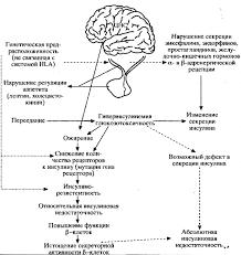 Какие продукты можно включать Реферат Сахарный диабет bestreferat ru