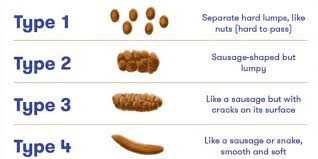 Stool Odor Chart What Your Poop Says About Your Health Self