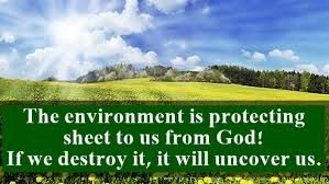 40 Heart Touching Sayings And Slogans On Save Environment