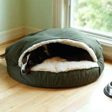 pet cave dog bed uk xl plastic sleeper chair by