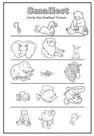11 best Comparing Size images on Pinterest | Preschool activities ...