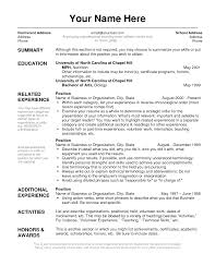 Resume Layout Examples Simple Resume Template