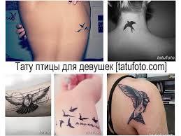 значение тату птицы для девушек фото рисунков эскизы смысл