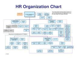 Hr Organizational Chart Sample Hr Structure Chart Www Bedowntowndaytona Com