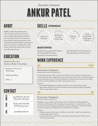 Modern Scientist Resume 2020 Pin By Calendar 2019 2020 On Latest Resume Infographic