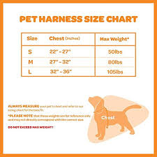 Voyager Harness Size Chart Best Pet Supplies Inc Voyager Padded Breathable Control Dog Walking Harness For Big Active Dogs Turquoise Small