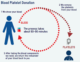 Blood Drive Height Weight Chart Transfusions And Platelet Donations The Platelet Society