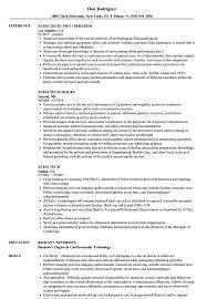 Tech Resume Samples Echo Tech Resume Samples Velvet Jobs 18