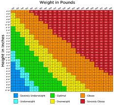 Slimming World Syns Chart Body Mass Index Fatgirlskinny Net Slimming World Recipes