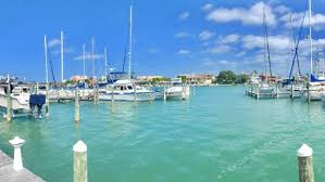 Clearwater Main Public Library Travel Guidebook Must Visit