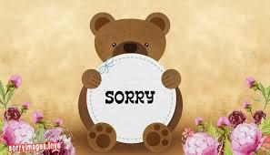 sorry teddy bear pic