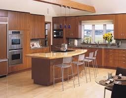 Small Picture Modern Kitchen Design Gallery Triangle Kitchen