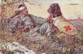 Risultati immagini per animali nella guerra mondiale