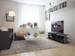 cute carpet ideas for small living room white fur rug beige solid wood flooring grey