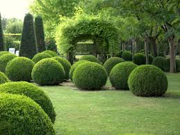 Small Picture 232 best A TOPIARY NURSERY images on Pinterest Topiaries