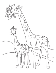 Small Picture Giraffe and Calf coloring page Download Free Giraffe and Calf