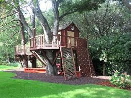 tree houses. Beautiful Tree In Tree Houses