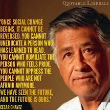 Social Change Quotes Gorgeous Once Social Change Begins Cesar Chavez Multicultural