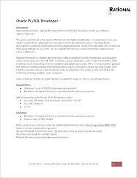 Sql Programmer Cover Letter Sample Oracle Pl Developer Cover Letter