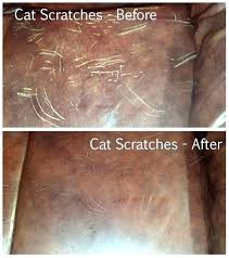 repair scratches leather repair cat