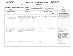 personal development plans sample best photos of individual work plan template individual